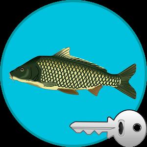 Реальная Рыбалка (ключ)