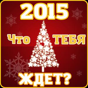 Тест на новый 2015 год