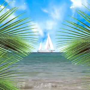 Tropical Paradise LWP