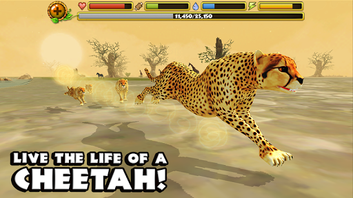 Cheetah Simulator на Андроид
