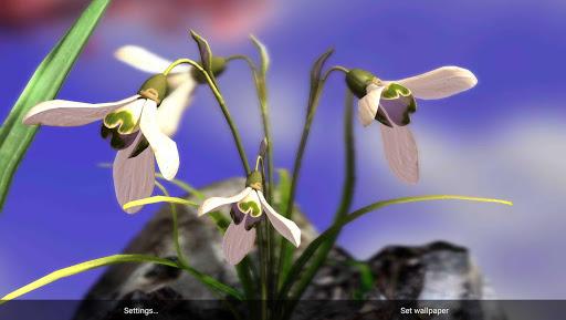Nature Live: Spring Flowers XL на Андроид