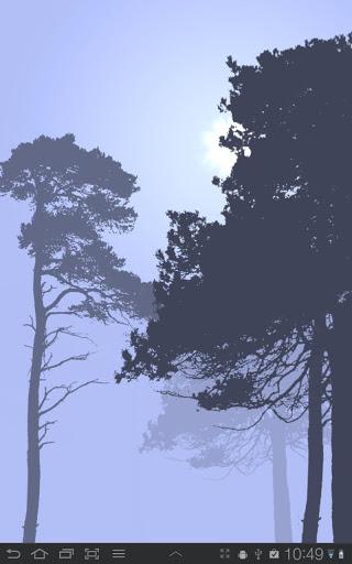 """Живые обои """"Misty Forest"""" для планшетов на Android"""