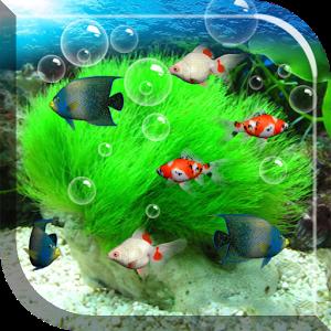 My Aquarium Live Wallpaper