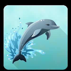 Приключения дельфина