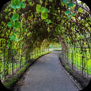 Escape Games — Garden
