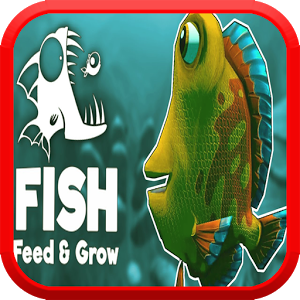 Feed Fish And Grow
