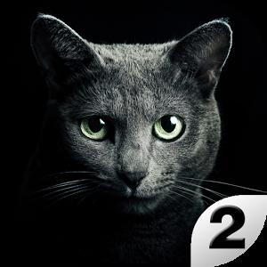 Найди кота 2