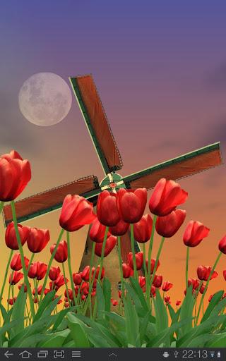 "Живые обои ""Tulip Windmill"" для планшетов на Android"