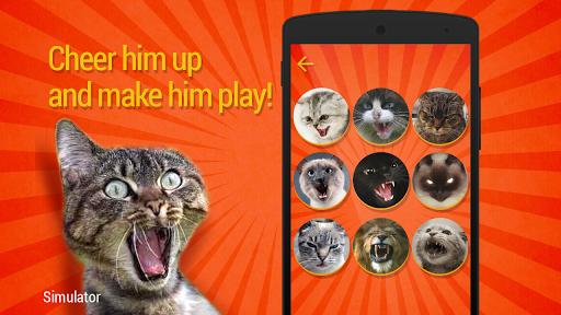 Дразнилка для кота скачать на Андроид