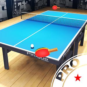 Pro Arena Table Tennis