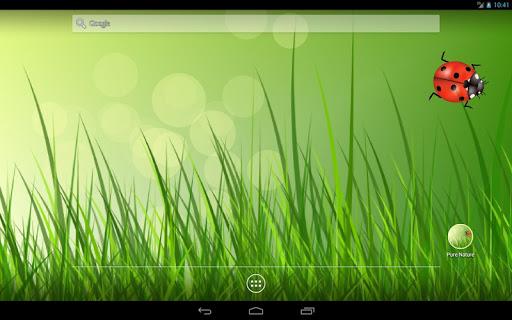 Pure Nature Free LWP скачать на планшет Андроид