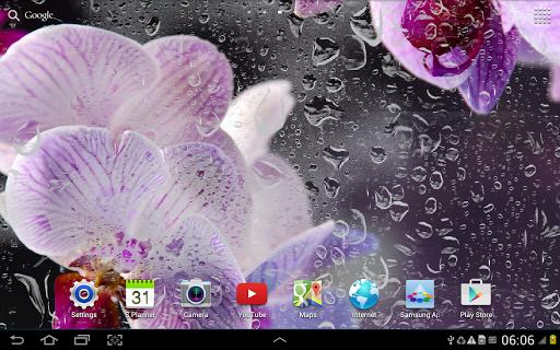 Орхидеи: Живые Обои для планшетов на Android