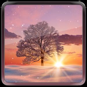 Зимний закат — Живые обои