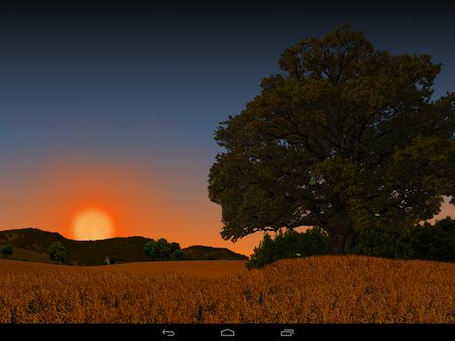 Day after Night Pro LWP на Андроид