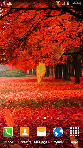 Осенний Лес - Живые Обои скачать на планшет Андроид