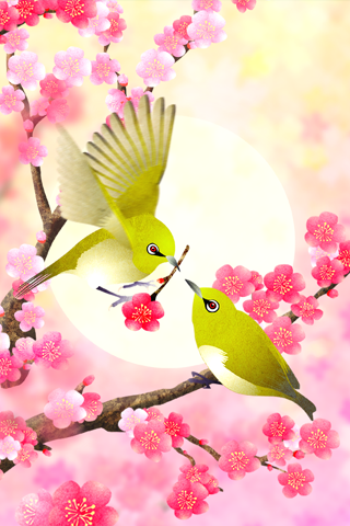 Plum-Blossom and White-Eye скачать на Андроид