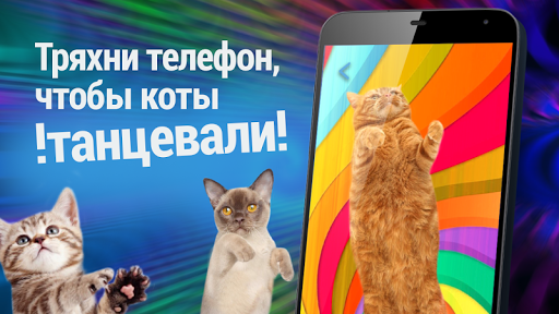 Диско Коты. Танцы скачать на планшет Андроид