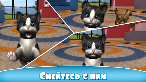 Daily Kitten для планшетов на Android