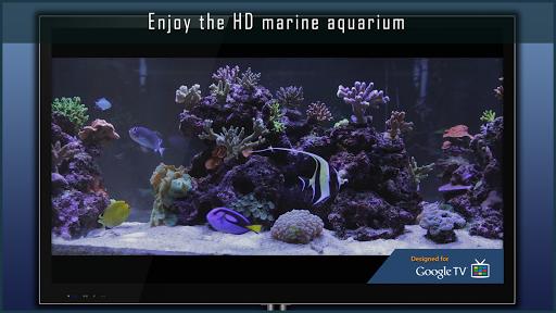 Marine Aquarium скачать на планшет Андроид
