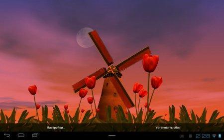 Живые обои Tulip Windmill