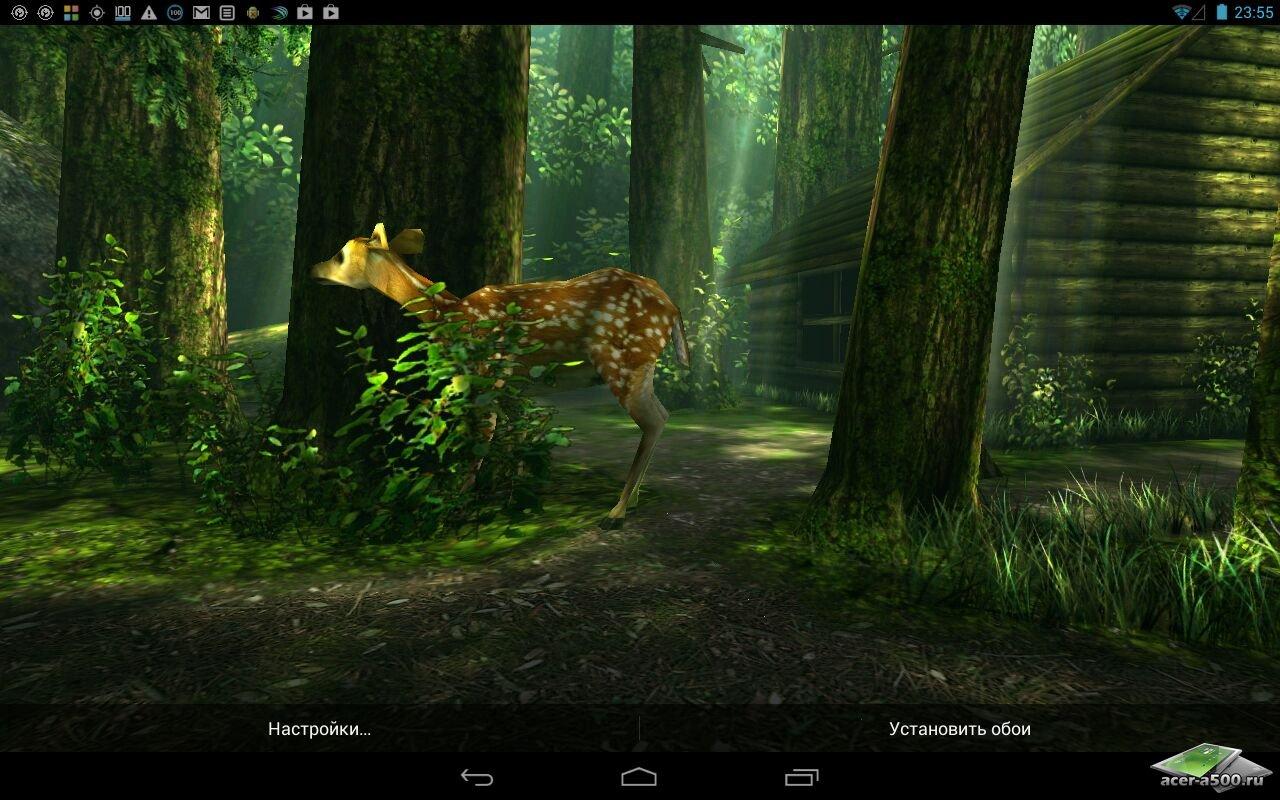 Живые обои Forest HD