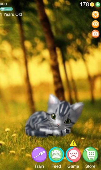 AR Cat на Андроид