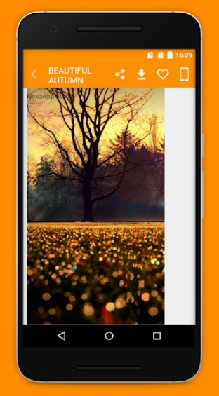 Beautiful Autumn Wallpaper на Андроид
