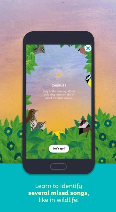 Birdie Memory на Андроид