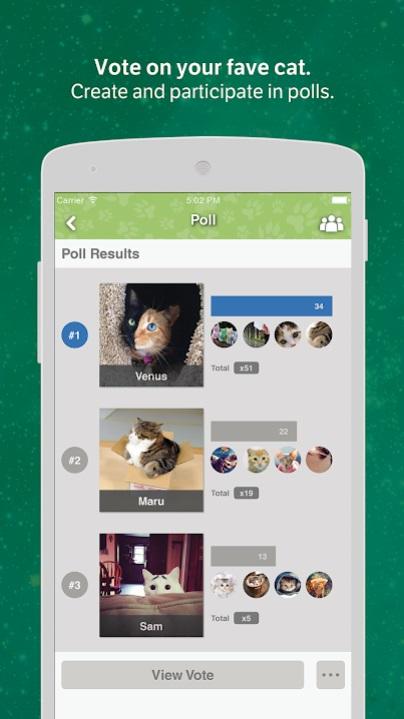 Cats Amino на Андроид