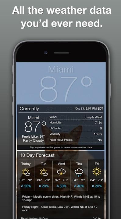 Grumpy Cat Weather на Андроид