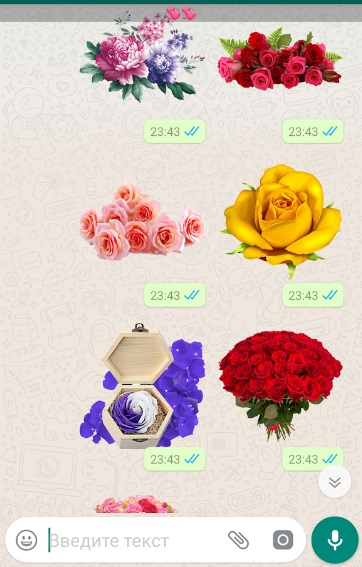 Любовные стикеры для Whatsapp на ПК
