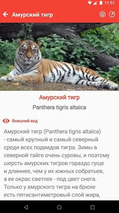 Животные Красной книги России на Андроид