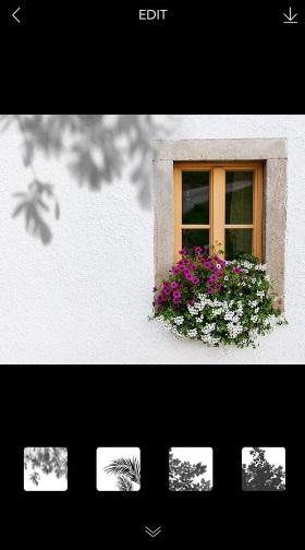 Scenty Lily - Colorow на Андроид